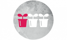 icon-productiviteit-iso-cutting-planter.png